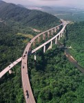 Необычное ДТП в Южной Америке