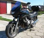 Информация по эксплуатации, максимальная скорость, расход топлива, фото и видео мотоциклов XJ 600 S Diversion 2000