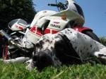 Информация по эксплуатации, максимальная скорость, расход топлива, фото и видео мотоциклов YZF 750 R 1993