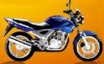 Мотоцикл CBX 250 Twister 2000: Эксплуатация, руководство, цены, стоимость и расход топлива