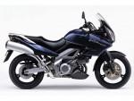 Мотоцикл DL1000 V-Strom (2002): Эксплуатация, руководство, цены, стоимость и расход топлива
