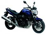 Информация по эксплуатации, максимальная скорость, расход топлива, фото и видео мотоциклов GSF650N Bandit (2009)