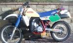 Информация по эксплуатации, максимальная скорость, расход топлива, фото и видео мотоциклов 250GS Enduro Sport (1984)