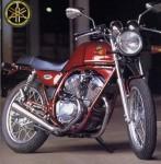 Информация по эксплуатации, максимальная скорость, расход топлива, фото и видео мотоциклов SRV250S (1993)