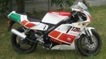 Информация по эксплуатации, максимальная скорость, расход топлива, фото и видео мотоциклов TZR125SP Belgarda (1992)