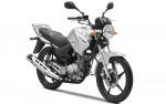 Информация по эксплуатации, максимальная скорость, расход топлива, фото и видео мотоциклов YBR125 (2010)