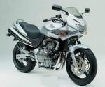 Мотоцикл CB600S Hornet (2000): Эксплуатация, руководство, цены, стоимость и расход топлива