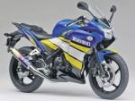 Информация по эксплуатации, максимальная скорость, расход топлива, фото и видео мотоциклов CBR250R Moriwaki (2011)