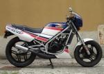 Информация по эксплуатации, максимальная скорость, расход топлива, фото и видео мотоциклов NS125F Rothmans (1986)