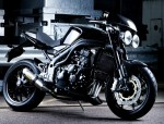 Speed Triple Carbon Edition (2007)