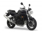 Speed Triple 955i SE (2004)