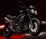 Speed Triple 15th Anniversary Edition (2009)