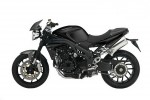 Speed Triple Carbon Limited Edition (2009)