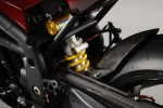 Speed Triple Special Edition (2010)
