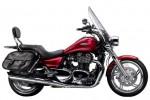 Информация по эксплуатации, максимальная скорость, расход топлива, фото и видео мотоциклов Thunderbird 1600 SE (2010)