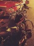 Мотоцикл FLHR Road King (1994): Эксплуатация, руководство, цены, стоимость и расход топлива