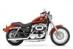 XL 50 50th Anniversary Sportster Limited Edition (2007)