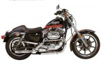 XLH 1100 Sportster Evolution 30th Anniversary (1987)