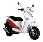 Мотоцикл Birdie (2012): Эксплуатация, руководство, цены, стоимость и расход топлива