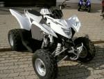 Информация по эксплуатации, максимальная скорость, расход топлива, фото и видео мотоциклов Cobra 320 (2008)