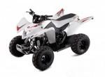 Информация по эксплуатации, максимальная скорость, расход топлива, фото и видео мотоциклов Cobra 50 (2009)