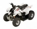 Мотоцикл Minikolt 50 (2009): Эксплуатация, руководство, цены, стоимость и расход топлива