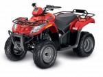 Мотоцикл 300 (2010): Эксплуатация, руководство, цены, стоимость и расход топлива