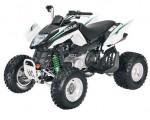 Мотоцикл 300 DVX (2009): Эксплуатация, руководство, цены, стоимость и расход топлива