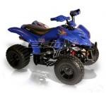 Мотоцикл BX110-S Tracker (2010): Эксплуатация, руководство, цены, стоимость и расход топлива