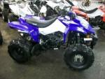 Информация по эксплуатации, максимальная скорость, расход топлива, фото и видео мотоциклов BX200-S1 Assault (2010)