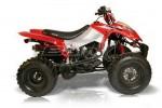 Информация по эксплуатации, максимальная скорость, расход топлива, фото и видео мотоциклов BX250-S1 Assault (2010)