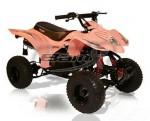 Мотоцикл BX50-S Side Kick (2010): Эксплуатация, руководство, цены, стоимость и расход топлива