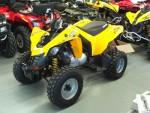 Мотоцикл DS 250 (2009): Эксплуатация, руководство, цены, стоимость и расход топлива