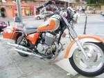 Мотоцикл Custom Guepard 250 (2008): Эксплуатация, руководство, цены, стоимость и расход топлива