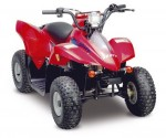 Quad Mini Rex 50 (2009)