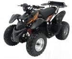Информация по эксплуатации, максимальная скорость, расход топлива, фото и видео мотоциклов ATV XT 50 (2009)