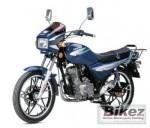 Мотоцикл DFE 125 IV (2008): Эксплуатация, руководство, цены, стоимость и расход топлива