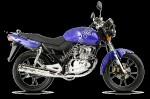 Мотоцикл DFE 125 T-10A (2009): Эксплуатация, руководство, цены, стоимость и расход топлива