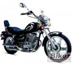 Мотоцикл DFE 250 (2008): Эксплуатация, руководство, цены, стоимость и расход топлива
