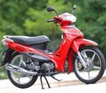 Мотоцикл Zig (2011): Эксплуатация, руководство, цены, стоимость и расход топлива