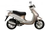 Мотоцикл Flexi 50 (2009): Эксплуатация, руководство, цены, стоимость и расход топлива