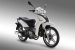Информация по эксплуатации, максимальная скорость, расход топлива, фото и видео мотоциклов Inox 125 (2012)