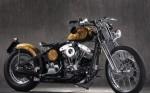 Мотоцикл Gypsy Soul (2013): Эксплуатация, руководство, цены, стоимость и расход топлива