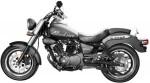 Информация по эксплуатации, максимальная скорость, расход топлива, фото и видео мотоциклов Blackster 250i (2013)