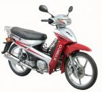 Мотоцикл Active 110 (2009): Эксплуатация, руководство, цены, стоимость и расход топлива