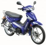 Мотоцикл Active 125 (2004): Эксплуатация, руководство, цены, стоимость и расход топлива
