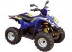 Мотоцикл 50 Joker (2009): Эксплуатация, руководство, цены, стоимость и расход топлива