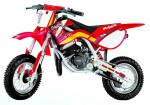 Grizzly 10 Enduro (2010)
