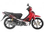 Информация по эксплуатации, максимальная скорость, расход топлива, фото и видео мотоциклов Kriss 120 (2011)