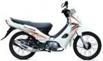 Информация по эксплуатации, максимальная скорость, расход топлива, фото и видео мотоциклов Kriss MR1 (2012)